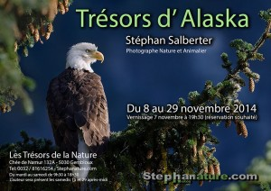 Stephanature - Tresors d Alaska