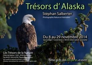 Stephanature - Tresors d Alaska